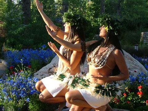 Paradise Island Dancers
